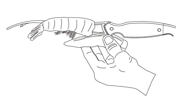 シュリンプクリーナー,エビの殻むき,背ワタ取り